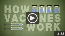Video: How Do Vaccines Work?